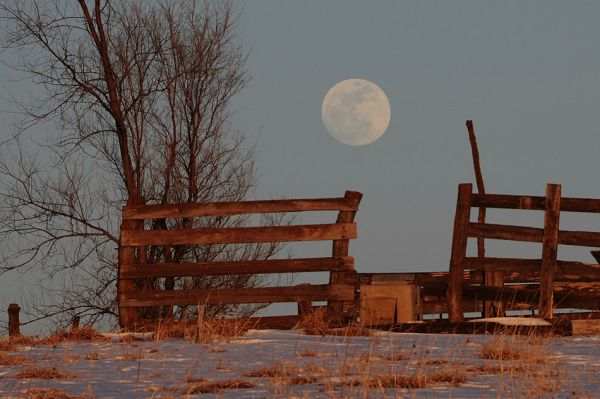 Snow_Moon_Dan_Bush_Evona_Missouri